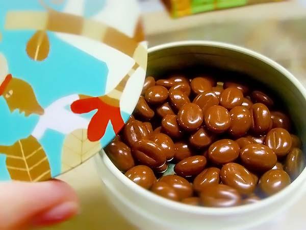 カルディ「カフェチョコケース」