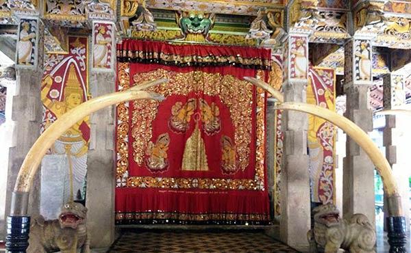 スリランカの魅力・世界遺産や見どころ旅行前に要チェック