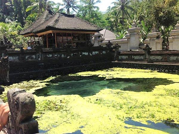 聖なる湧水の泉