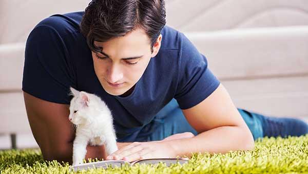 猫と本を読む男性