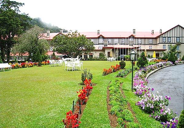 スリランカの芝生