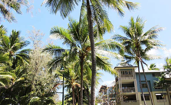 パームコーブ観光レポ・大人な雰囲気漂うビーチと街が魅力