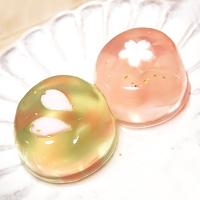 笹屋伊織の和菓子・300年以上も続く老舗の逸品を味わえる