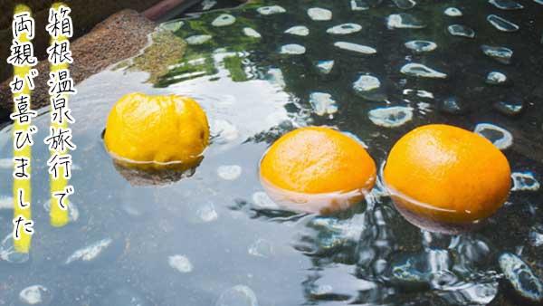 温泉に浮かぶ蜜柑