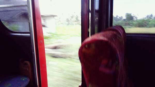 ボロブドゥール行きバスから見る風景