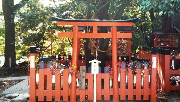 下鴨神社にある連理の賢木