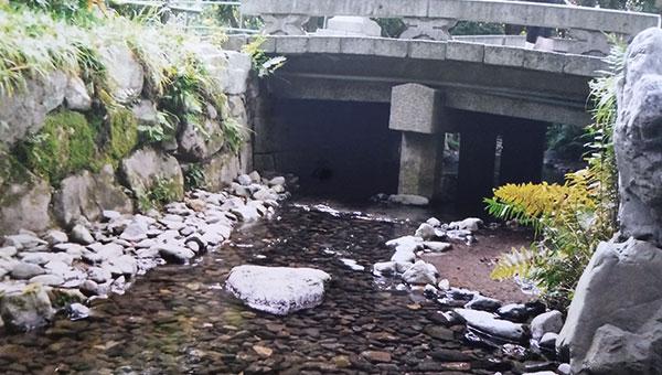 御手洗川にかかる暗渠