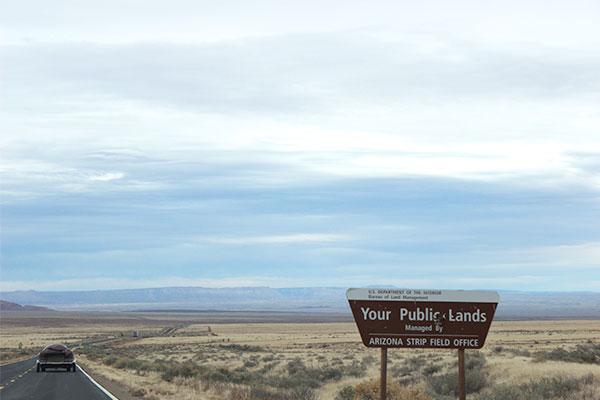 アリゾナの荒野を走る道路と看板