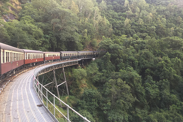 キュランダ鉄道からみた景色