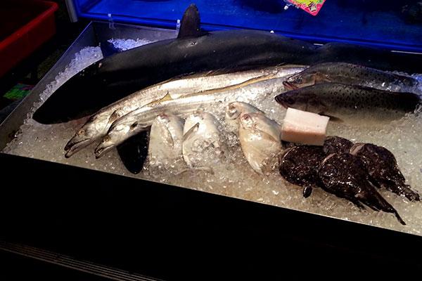 新鮮なお魚氷