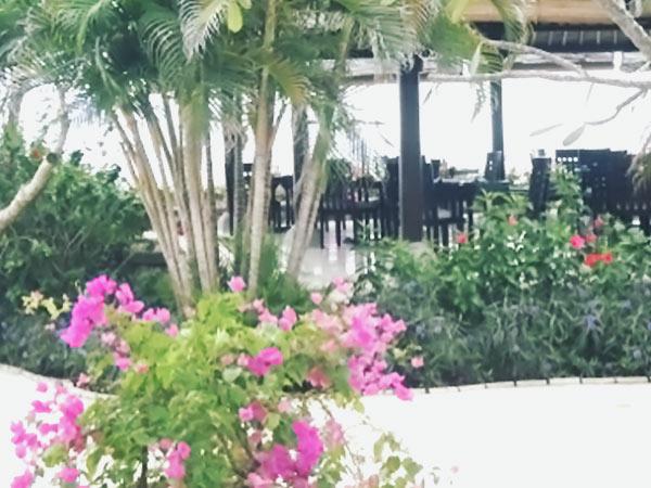 バリのホテルのテラス席
