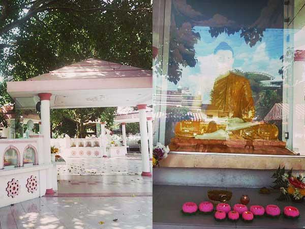仏教施設の外回りと釈迦像