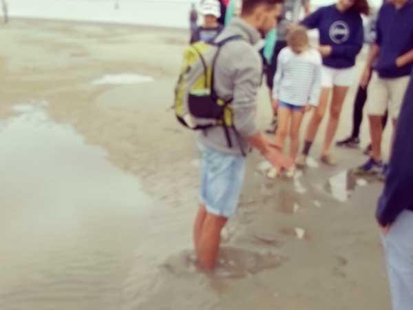 砂に沈むヴァランタン君