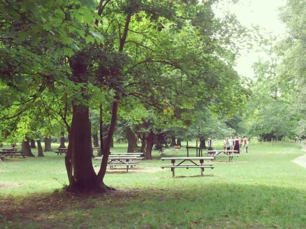 パリ花公園内の様子