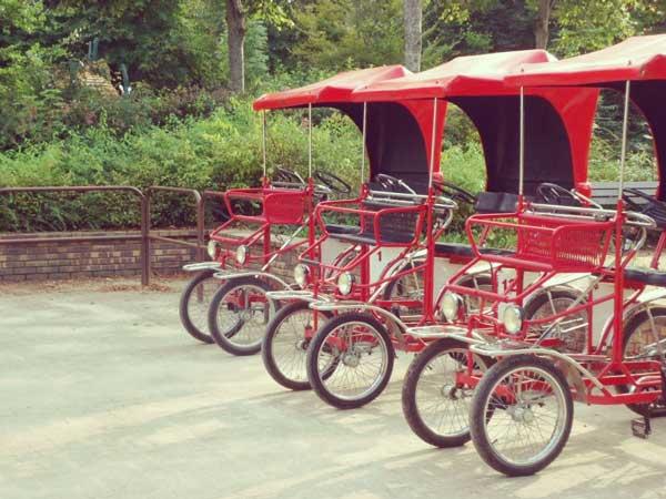 パリ花公園の貸自転車ロザリー