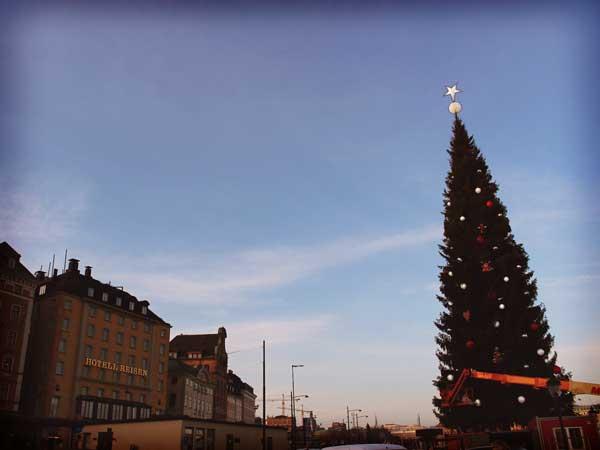 5階建て程の高さがあるクリスマスツリー