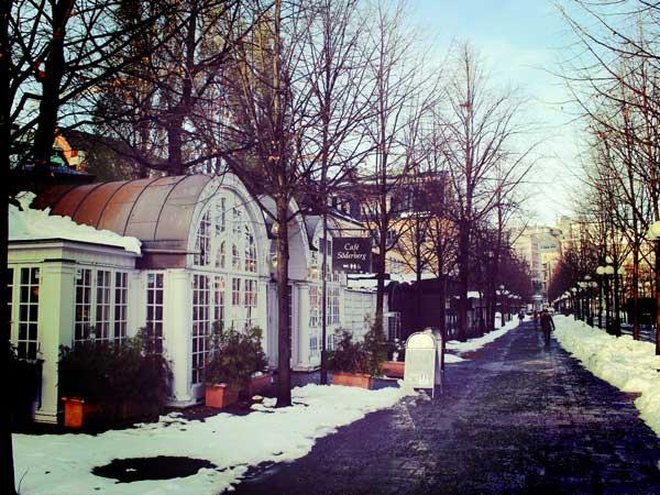 クングストレードゴーデン駅近くの美しいエリア