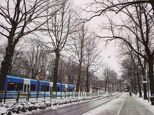 バス停からスカンセンまで歩いて見た景色
