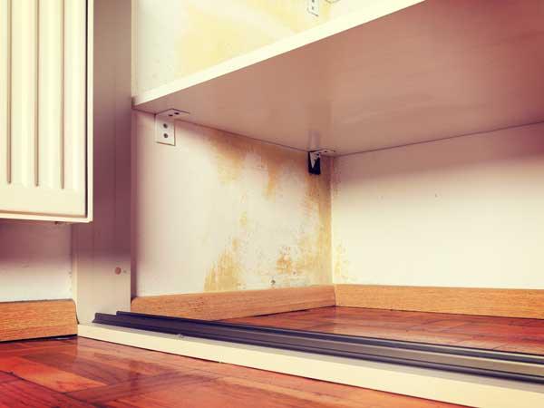 湿気のひどい家のカビがあるタンス