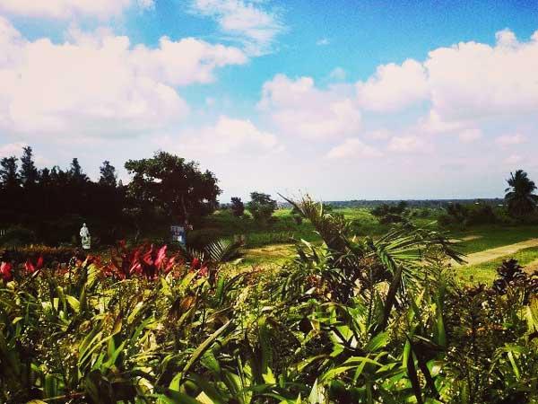草原と青空が美しい夏のフィリピン