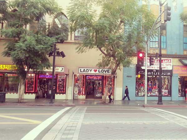 ブルーバード通りの店
