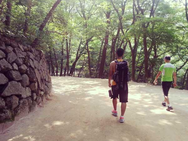 石窟庵の自然溢れる山道