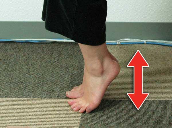 ふくらはぎ引締め効果がある爪先立ちを実践中の様子アップ