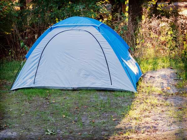 公園に建てられたテント