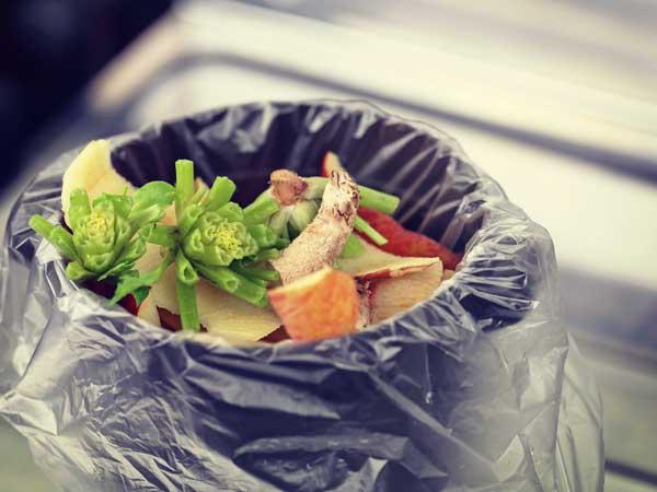 ゴミ箱に入っている野菜の切れ端