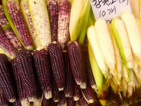 韓国の市場で見つけたトウモロコシ