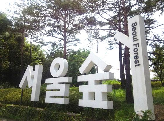 seoul-walk-01-18